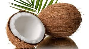 COCONUT – FRIEND OR FOE?